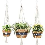 Greenstell Macetas colgantes con colgador para plantas, 3 ganchos y etiquetas tipo T, cesta para colgar en interiores y exteriores, juego de 3 macetas decorativas para colgar en la pared (azul)