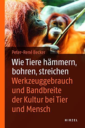 Wie Tiere hämmern, bohren, streichen: Werkzeuggebrauch im Tierreich: Werkzeuggebrauch und Bandbreite der Kultur bei Tier und Mensch