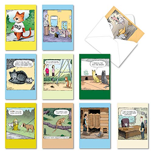 NobleWorks - 10 Assorted Happy Birthday Cards - Funny Greeting Cards with Cartoons, Bulk Boxed Set - Feline Funnies A2679BDG