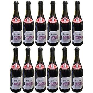 Rotwein-Italien-Lambrusco-Grasparossa-di-Castelvetro-DOC-lieblich-12x075L