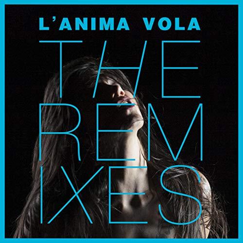 L'Anima Vola (Big Fish Remix)