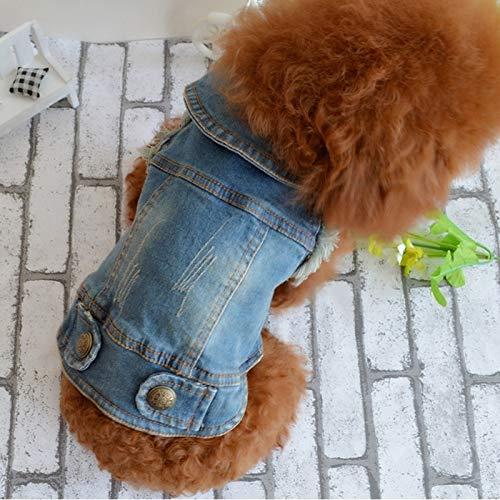 Tuzi Qiuge Revers Weste für kleine und mittelgroße Hunde, klassisches Design, Jeansstoff, gewaschene Kleidung, Größe: XL (Hellblau) (Farbe: mit Hut)