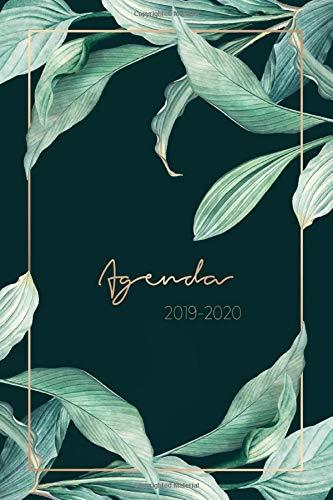 Agenda 2019-2020: Agenda Settimanale 2019 - 2020   Agenda Giornaliera - Agosto 2019 a Dicembre 2020 - Journalier, Agende, Office e Calendario 2019/2020   Pianifica i tuoi appuntamenti quotidiani