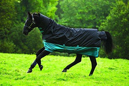 Horseware Amigo Mio All-In-One Turnout Medium 200g Füllung Regendecke mit Halsteil Black & Turquoise 115-160 (130)