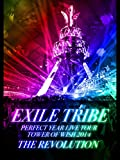 EXILE TRIBE PERFECT YEAR LIVE TOUR TOWER OF WISH 2014 ~THE REVOLUTION~