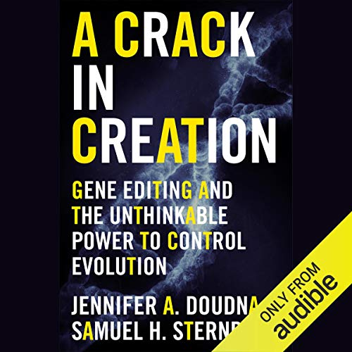 Page de couverture de A Crack in Creation