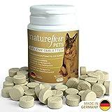 Natureflow Suplemento para articulaciones de los Perros con mejillón de Labio Verde, MSM y Garra del Diablo - Alta digestibilidad - 100 Pastillas suficientes para 6 Meses - Condroprotector