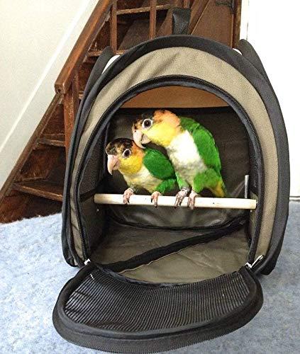 Generic GIE Cage Cockatiel trasporto pieghevole Pet vettore Folda uccello Budgie T trav Parrot trasporto Rier Budgi viaggio portatile vettore B
