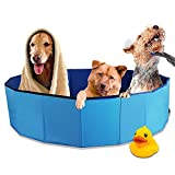 BIGTREE Pet Swimming Pool Foldout Instant Dog Bath Protective Anti-Slip Lining Large 63' Blue