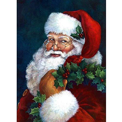 BiBeGoi DIY Diamond Painting Christmas Santa Claus for Adult,5D Art Full Round Diamond Drill Kit,Wall Painting Kit,Gem Art Craft Home Game for Children Kid 15.8x11.8 inch