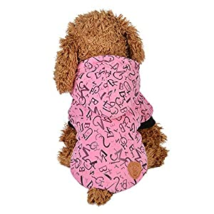 Fathoit Winter Hoodie De Chien Sweater Warm Shirt Manteau,VêTements pour Animaux De Compagnie Chiot Col Rond Chemise à Deux Pattes avec Capuchon Lettre Manteau