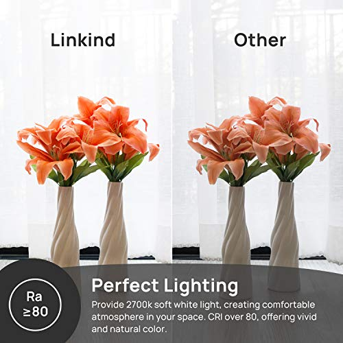 Linkind Bombillas LED