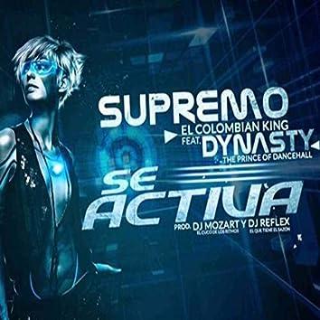 Se Activa (feat. Dynasty)
