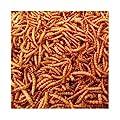 10kg Wheatsheaf Dried Mealworms for Wild Birds (2x5kg) by Wheatsheaf