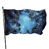 Viplili Flagge/Fahne, Weather Resistant Celestial Galaxy Night Sky Full of Stars Garden Flag, Family Flag - 3 X 5 Ft