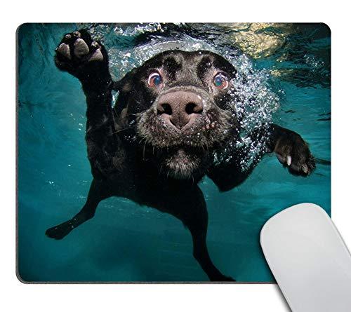 Wasach Gaming-Mauspad, individuelles Design, große Matte, lustiger schwarzer Labrador Retriever Hund beim Schwimmen mit ausdrucksstarkem Gesicht, 240 mm x 200 mm x 3 mm