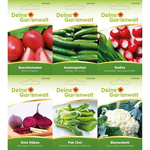 Gemüsesortiment | Gemüse-Set mit 12 Sorten Samen | Gemüsesamen-Sortiment | Saatgut für den Gemüsegarten - 2