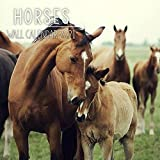 Horses 2021 Wall Calendar: 12 Month Calendar With Many Colorful Photos. Size 8.5 x 8.5 Inches.