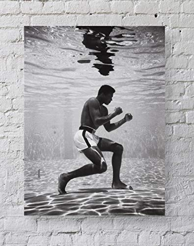 Boxing Sports Poster Standard Size   18-Inches by 24-Inches   Underwater Posters Wall Poster Print