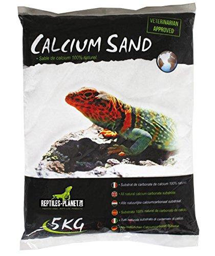 Reptiles Planet Arena de Arena de Calcio terrarios Calcio Sand Artic Blanco 5kg