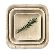 """Disposable Palm Leaf Square Dinner Plates by Rustic Earthware   25 Pack of 10"""" Eco Friendly Dinnerware   Weddings, BBQs, Special Occasions, Gatherings"""
