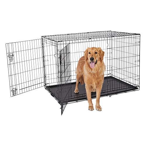 Petco Brand - Animaze 2-Door Folding Dog Crate, 48.5