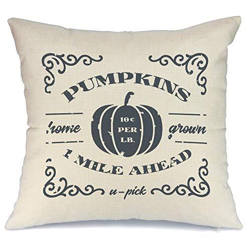 AENEY - Funda de almohada de 45 x 45 cm, diseño de calabaza y otoño, para decoración de otoño, para sofá o sofá 2024bz18