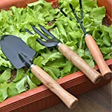 Gardening Forks Review and Comparison