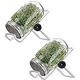 XIAOQI Mason Jar - Juego de tarros de germinación de semillas con soporte de tapa para brotes de brócoli, alfalfa, 1000 ml, 2 unidades