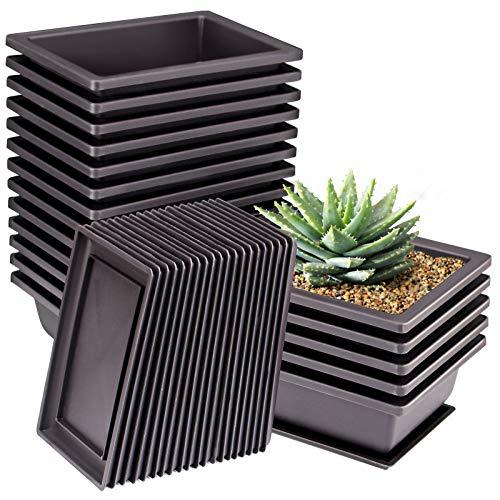 ZOENHOU 20 PCS 6.5 Inch Rectangular Bonsai Training Pots, Premium Plastic Plant Pot with Deep Humidity Trays, for Plants Flowers African Violets Reusable Durable