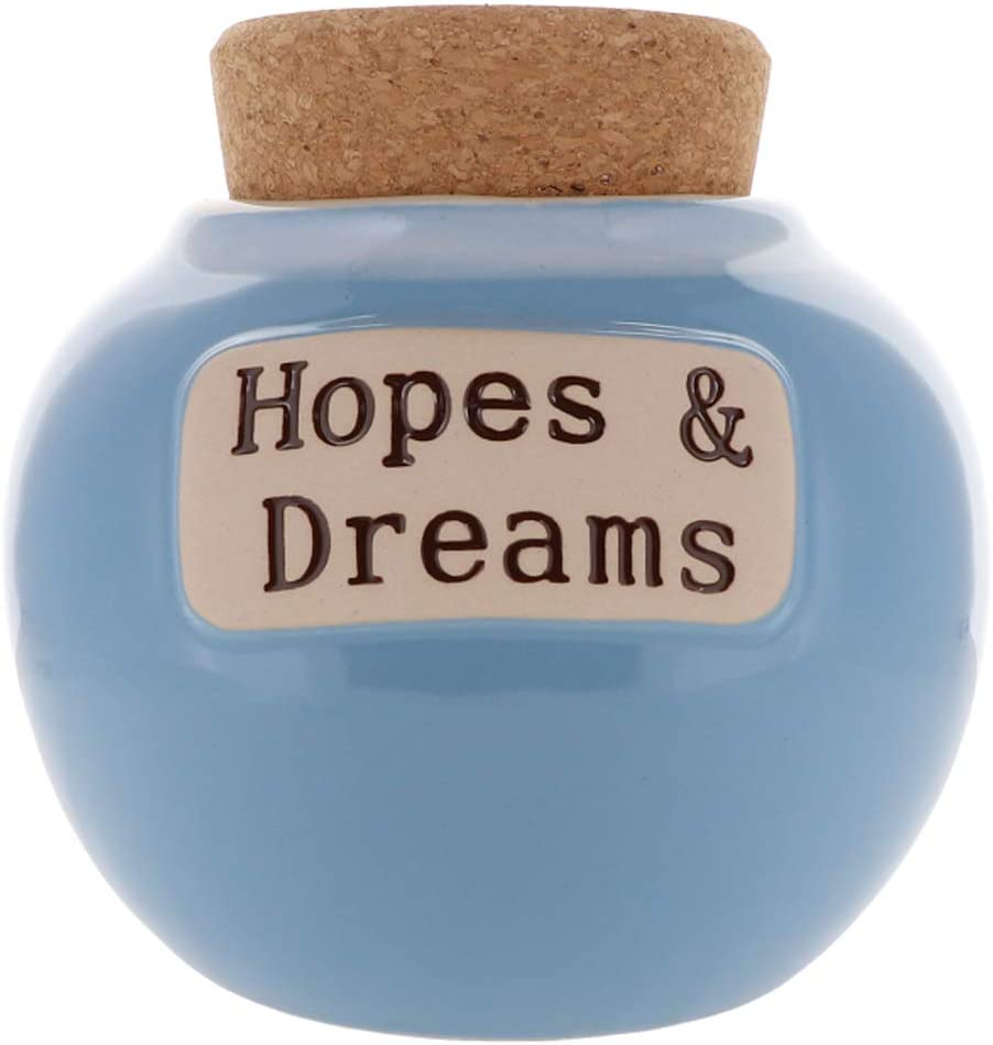 Cottage New Shipping Free Very popular Creek Hopes And Dreams Jar Piggy Bank Girls Wish for