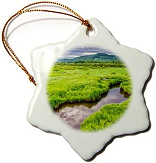 OneMtoss USA, West Virginia, Davis. Landscape of The Canaan Valley. Snowflake Ornament, Porcelain,