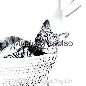 Musica Preciso