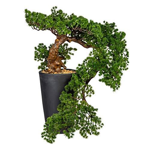 Gasper Kunstpflanze Bonsai Baum Lärche 70 cm künstliche Pflanze im Topf Han-Kengai - 3319178-50