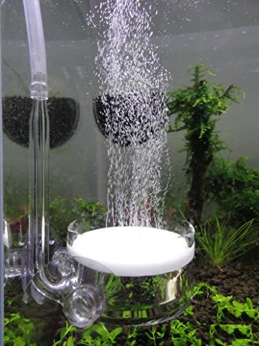 JARDLI Pollen Glass CO2 Diffuser with U-Shape Connecting Tube for Aquarium...