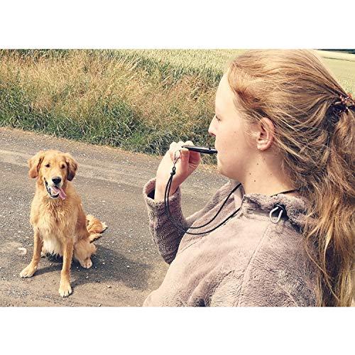 ACME Hundepfeife No. 211,5 + GRATIS Pfeifenband | Original aus England | Ideal für die Hundeausbildung | Robustes Material | Genormte Frequenz | Laut und weitreichend (Black)