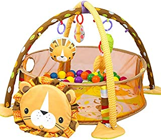 Baby Play Gym, 3 in 1 Activity Mat with Removable Toys Bars & Walls, Infant Marine Ball Pool, 4-Piece Hanging Toys & 30-Pi...