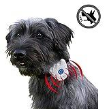 Waterproof Ultrasonic Anti-Bark Small Dog Collar- No Shock No Pain No Harm! Humane, Safe, Gentle and Effective Stop Barking Pet Training Collar Utilizing Latest Intelligent Ultrasonic Sound Technology