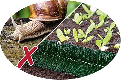 Schneckenzaun grün; aus garantiert deutscher Produktion Ø 10 cm (10 Meter)