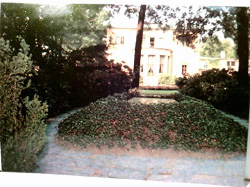 Bayreuth. Villa Wahnfried. Grab Richard und Cosima Wagners. AK farbig. Gebäudeansicht, Park mit Grabplatte, Museums Stempel