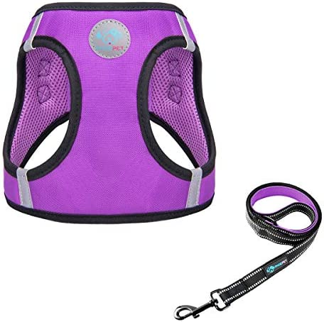PHOEPET Step in Dog Harness and Leash Set Reflective Adjustable Dog Vest Harness Soft Pet Walking product image