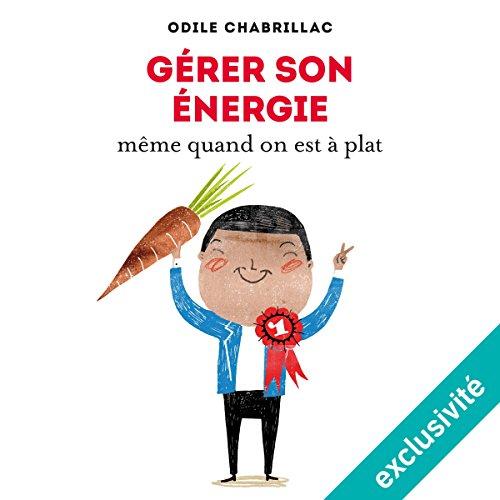 Gérer son énergie même quand on est à plat audiobook cover art