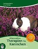 Therapie für Kaninchen