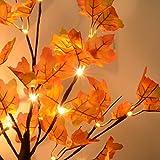 24 LEDs Ahornblatt Baum Licht, 50cm Schreibtisch Ahorn-Blätter (Herbst) Baumlicht Warmweiß,Herbst Dekoration Blätter Lichterketten für Thanksgiving, Weihnachten, Innen Deko - 4