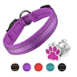 PcEoTllar Collar de Perro Suave Acolchado Neopreno Ajustable Collares Reflectantes para Mascotas para Perros PequeñOs Medianos Grandes - Morado - M