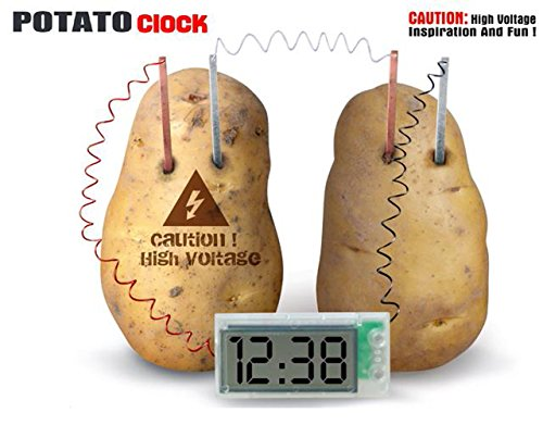 FreshGadgetz - Kit per esperimenti scientifici con orologio per patate (piegato)