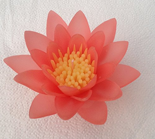 WASIWAX flor rojo agua Lily vela flotante–L