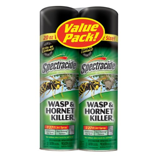 which is the best wasp spray in the world