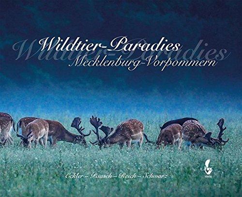 Wildtier-Paradies Mecklenburg-Vorpommern