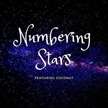 Numbering Stars (Demo)